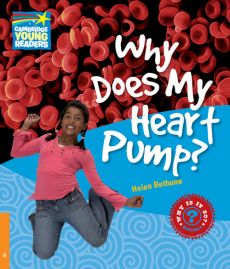 Why Does My Heart Pump? 6 Factbook - Helen Bethune