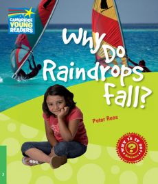 Why Do Raindrops Fall? 3 Factbook - Peter Rees
