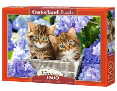 Puzzle 1500 Cute Kittens