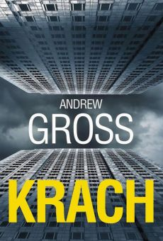 Krach - Andrew Gross