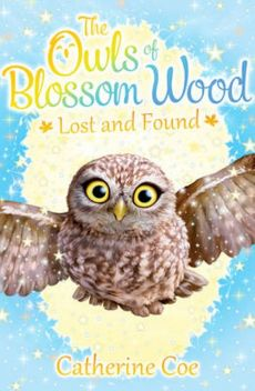 The Owls of Blossom Wood: Lost and Found - Catherine Coe