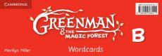 Greenman and the Magic Forest B Wordcards (Pack of 48) - Marilyn Miller