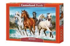 Puzzle Call of Nature 2000