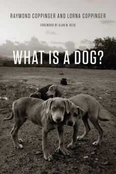 What Is a Dog? - Lorna Coppinger, Raymond Coppinger
