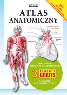 Atlas anatomiczny - Outlet
