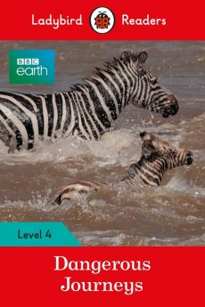 BBC Earth: Dangerous Journeys