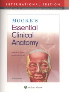 Moore's Essential Clinical Anatomy Sixth edition, International Edition - Agur Anne M. R., Dalley Arthur F.
