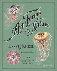 Art Forms in Nature Poster Book - Ernst Haeckel