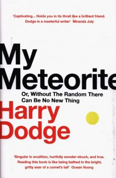 My Meteorite - Harry Dodge